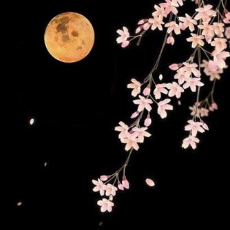 flower-moon2