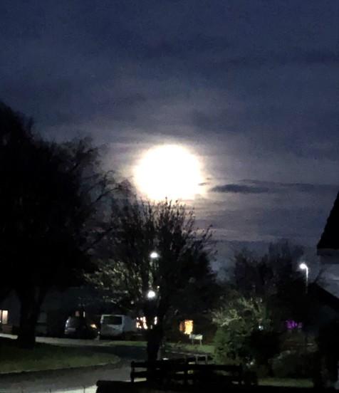 cold moon (2).jpg